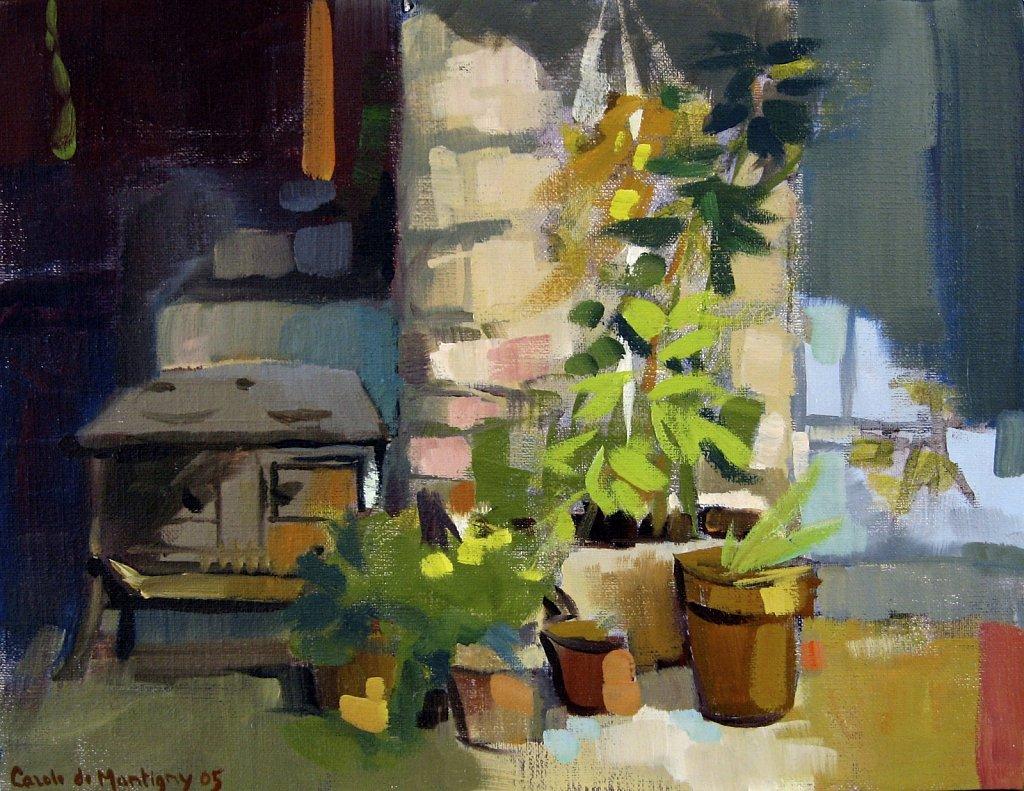 Plantes dans la cour